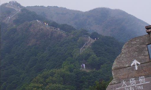 梧桐山·最后一个山头上向上看